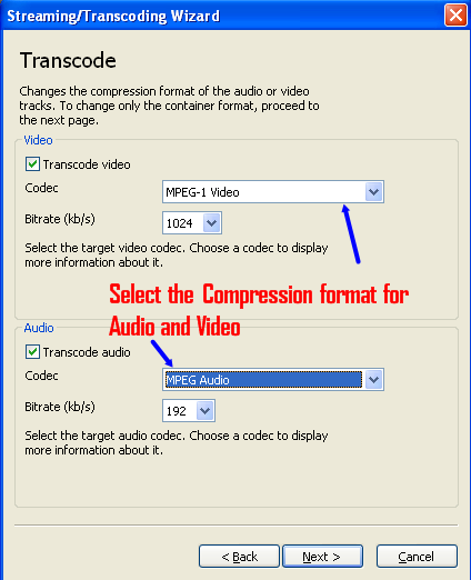 chose-transcode output format