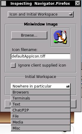 Choosing the initial workspace