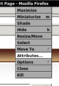 Selecting the Attributes option