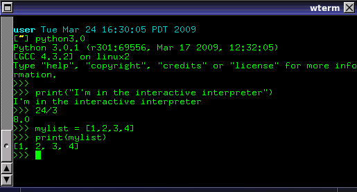 Python interactive interpreter