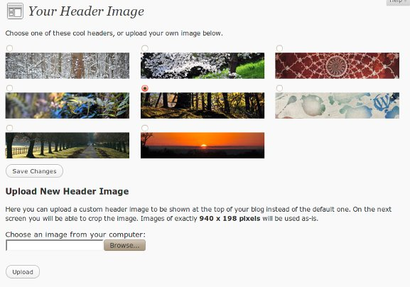 wp3-theme-header