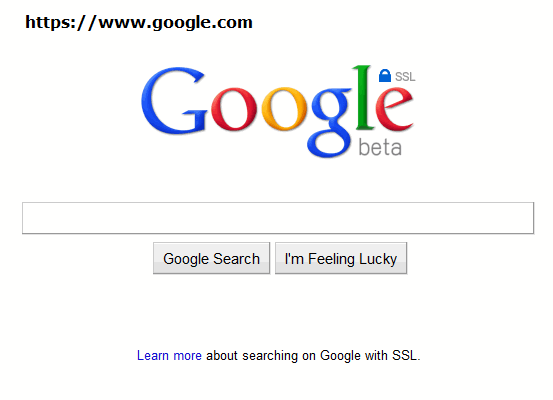 google-ssl-search