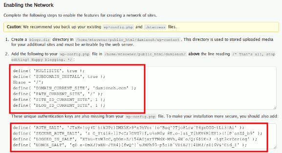 wpmu-copy-code