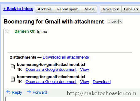 boomerang-attachment-bugs