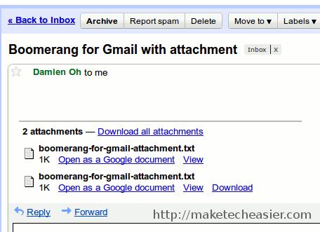 boomerang-attachment-bugs