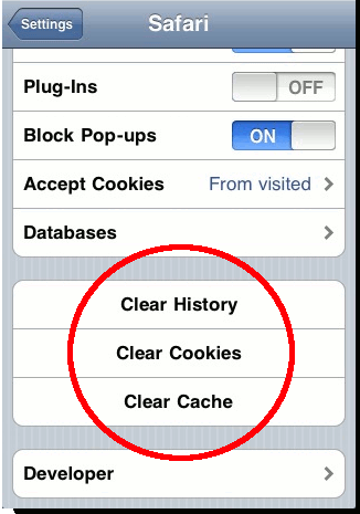 iPhone-ClearHistory