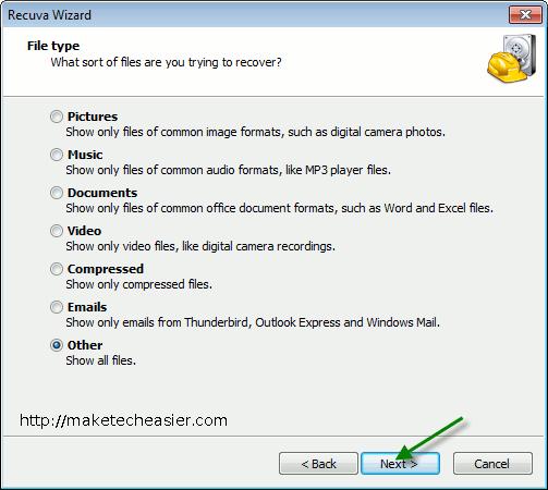 recuvaportable-File-Type