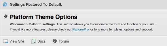 Platform 01aa Platform Theme Options.jpg