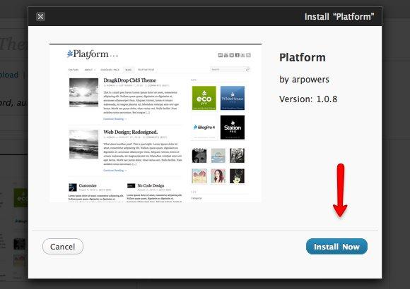 Platform 01b Install Platform.jpg