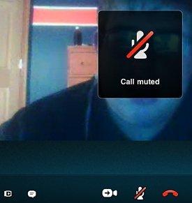 Skype-Mute