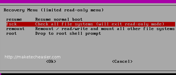 ubuntu-select-fsck