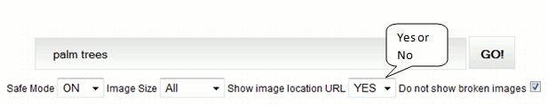 google-image-location