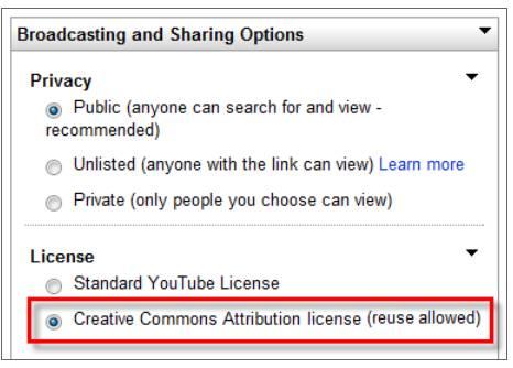 videoeditor-licensing