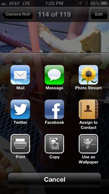 Sharing Options - Photo Stream on iOS 6