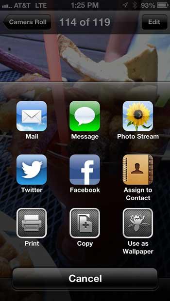 Sharing Options - Photo Stream on iOS 6