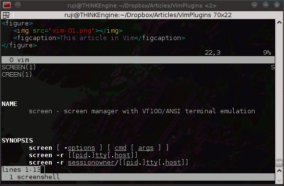 Vim plugins: Screen