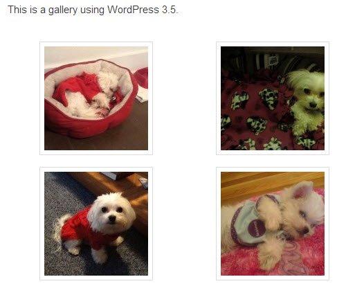 Image gallery using WordPress 3.5 final result.