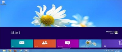 How to Change The Size and Position Of The Windows 8 Start Screen