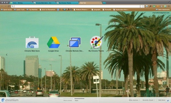 This is my custom theme being used on my Chromium browser.