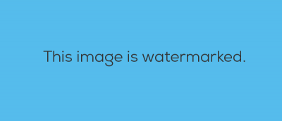 Best Plugins to Automatically Watermark Images In WordPress