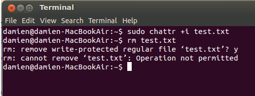 chattr-example lock up files