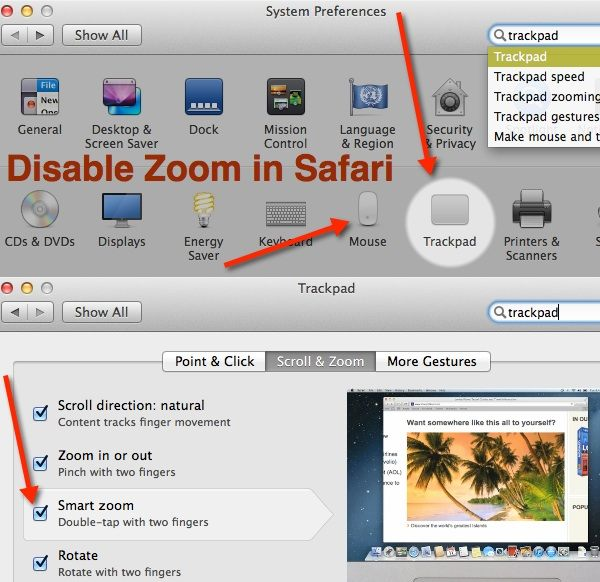 Follow these steps to disable smart zoom in Safari - OS X Mavericks.