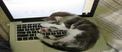 Disable App Nap on Select Applications in Mac OS X Mavericks