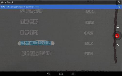 SmartphoneCamera-Translate