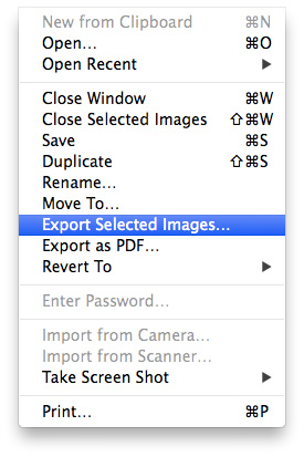 Convert-Images-Preview-Export-Selected-Images