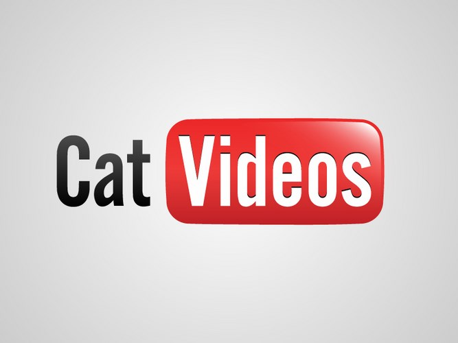HonestSlogans-YouTube-cat-videos