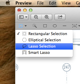 Transparencies-Preview-Lasso-Selection