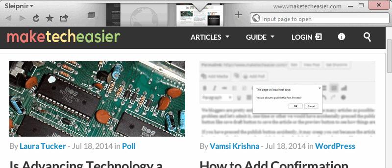 Sleipnir 6: An Unusual New Web Browser for Windows and Mac