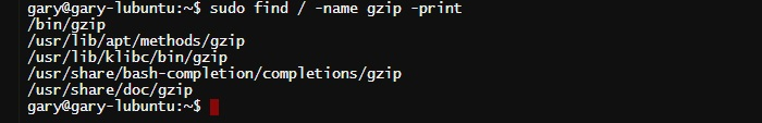 find-name-gzip