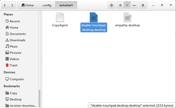 how-to-disable-touchpad-automatically-desktop-file-in-autostart-folder