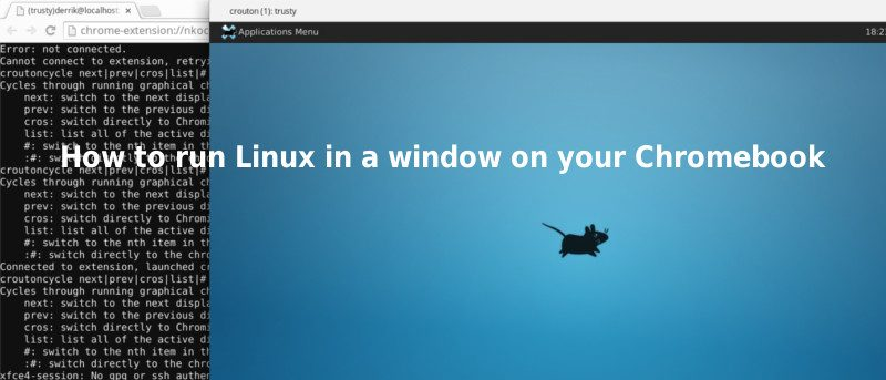 How to Run Linux in a Window on your Chromebook - Make Tech Easier