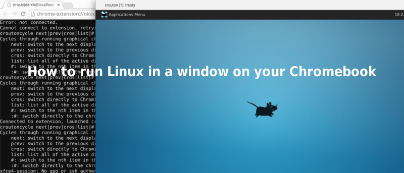 How to Run Linux in a Window on your Chromebook