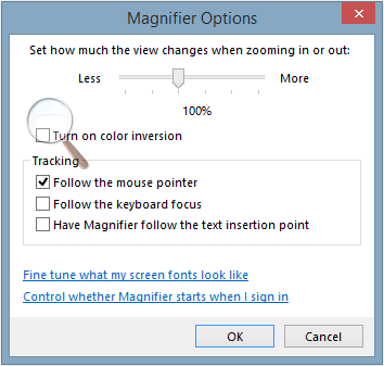 Windows Magnifier options.