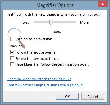 Windows Magnifier options.