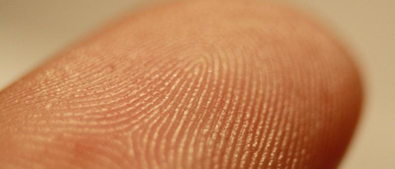 Are Biometrics the Future of Online Banking?