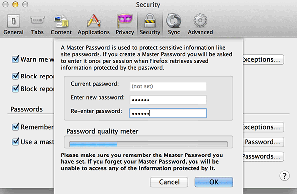 When you have entered a master password, click on 'OK.'
