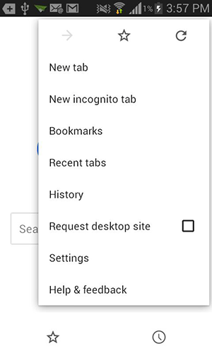 Tap on 'New incognito tab.'