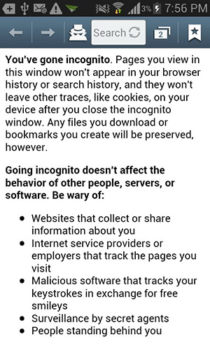 About incognito mode.