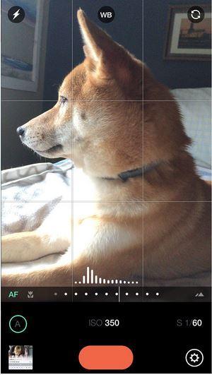 Manual – Custom exposure camera iOS app.