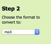 Choose the format to convert to.