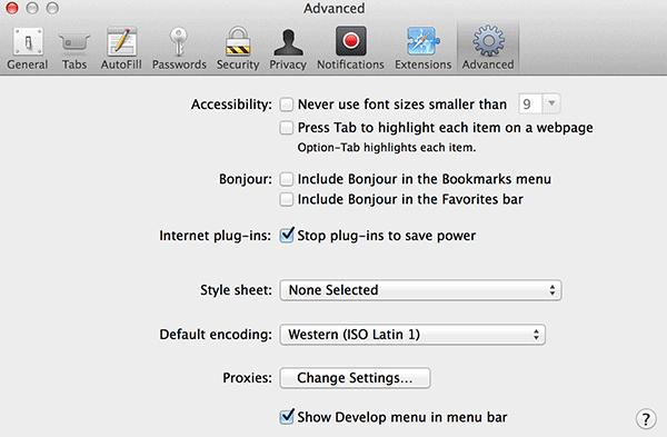 Selected 'Show Develop menu in menu bar.'
