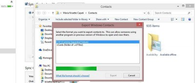How To Export iPhone Contacts to CSV File in Windows 8