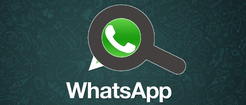 How to Search Your WhatsApp Chat History [Quick Tips]