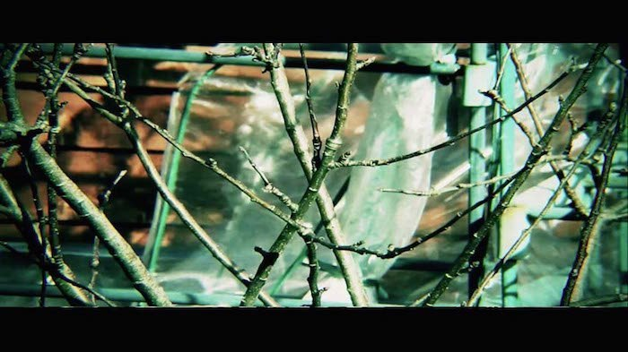 aspect-ratios-16x9-cinematic-bad