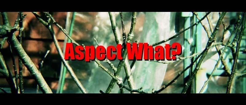 Video Aspect Ratios for Beginners