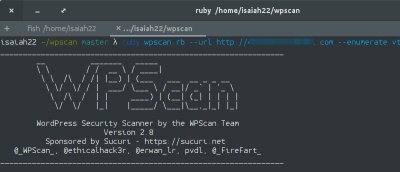 How to Audit WordPress Security from the Command Line with WpScan